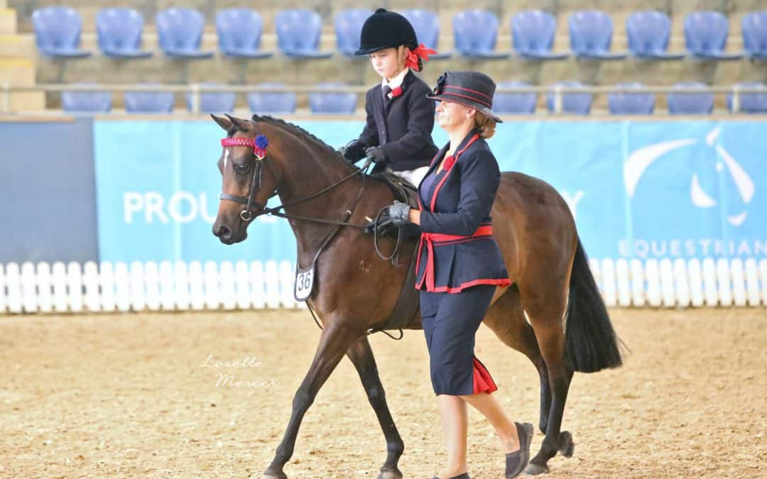 Ramsay show saddle off to The Nationals!